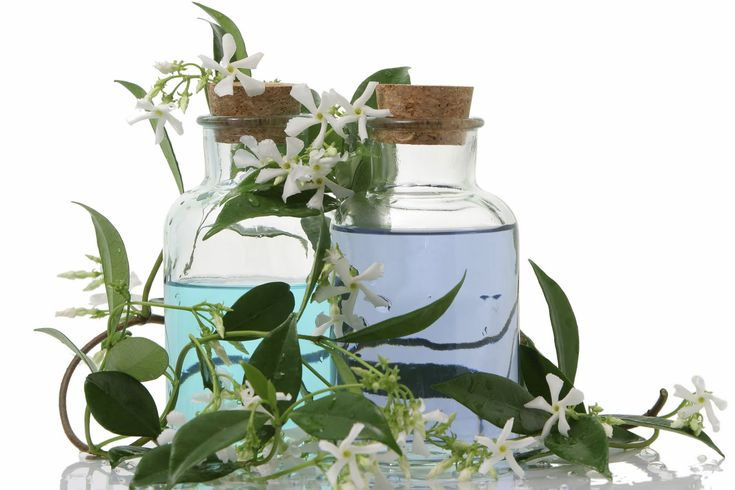Aromatherapy | The Stress Busting Therapist: Aromatherapy: Making Scents of Stress