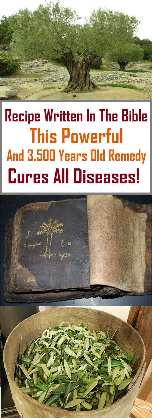 Recipe Written In The Bible: This Powerful And 3.500 Years Old Remedy Cures All Diseases!