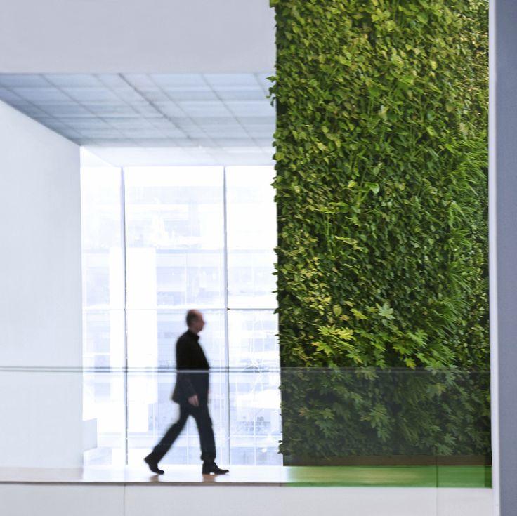14 vertical garden vancouver green 1600 1599 for Green wall vancouver