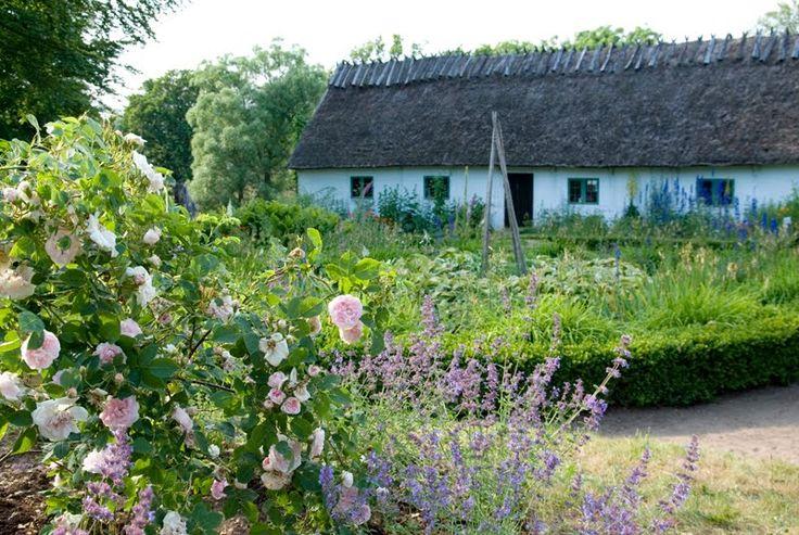 South Swedish traditional garden at Kulturens Östarp, Skåne, Sweden. (Allmogeträdgård)