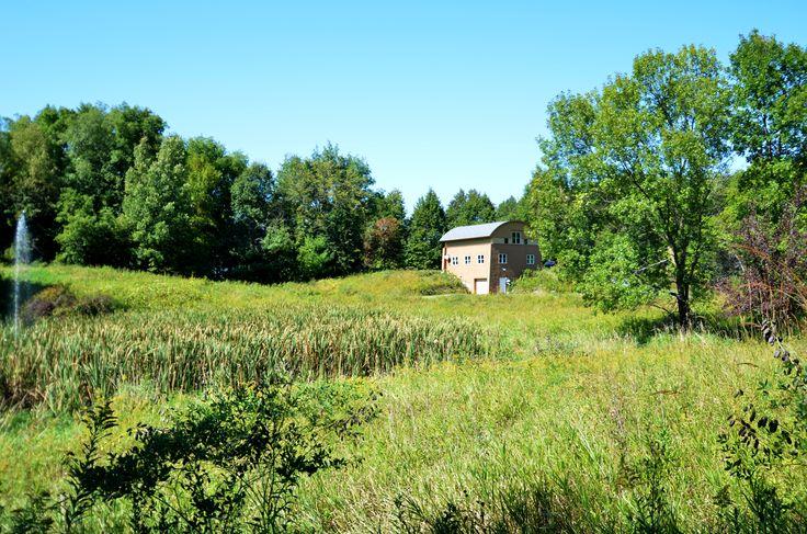 Native prairie field with contemporary cedar home.