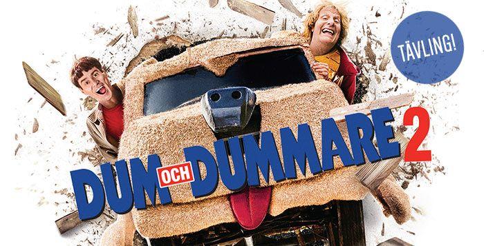 Dum och Dummare 2 Tävling