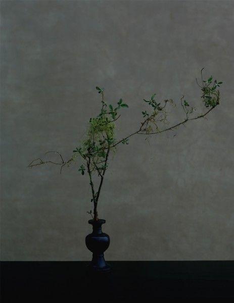 Yoshihiko Ueda