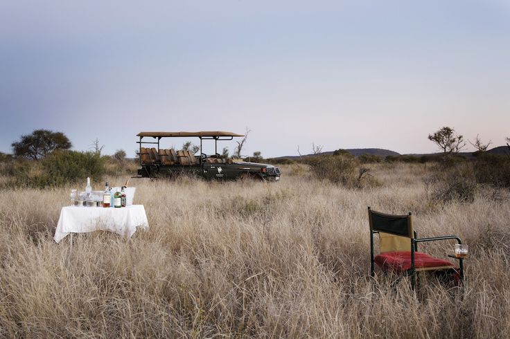 Safari in style in Madikwe