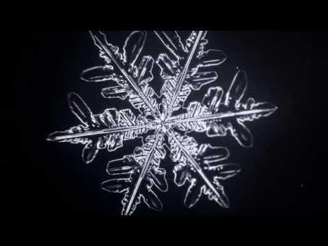 Microscopic Time-Lapse of Growing Snowflake - Vyacheslav Ivanov (2014) - YouTube