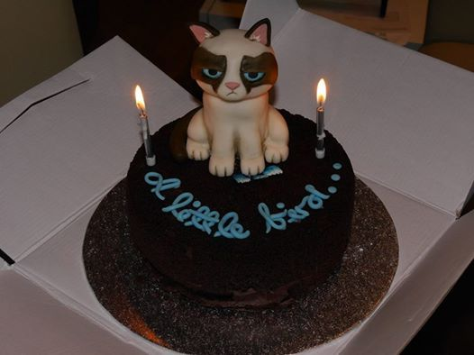 Grumpy cat bithday cake Gluten-free brownie cake with nutella