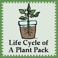 FREE Life Cycle of a Plant Pack for ages 2 to 8 -  over 55 pages - 3Dinosaurs.com