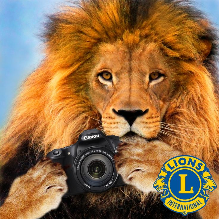 Clubs have asked for this image without text so they can add their own language. http://lionsclubs.org