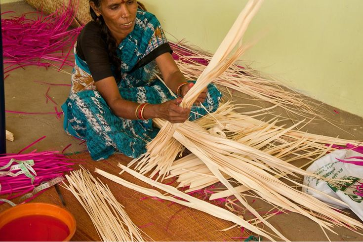 Segregation of palm leaf is being made.