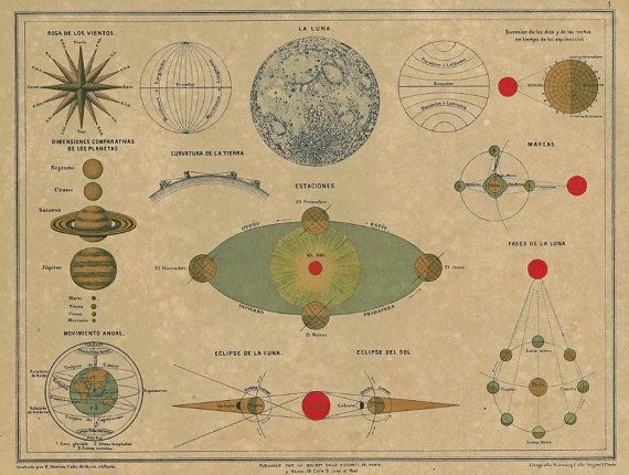 Antique astronomy plate. This is so beautiful to me.