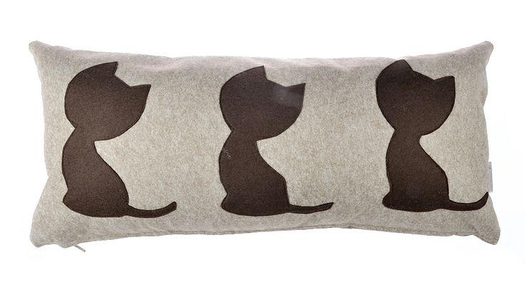 Koty, koty, koty na punkcie kotów!  toolie