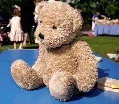 If you've got a primary school-age child, chances are you've had Teddy round for a sleepover ...