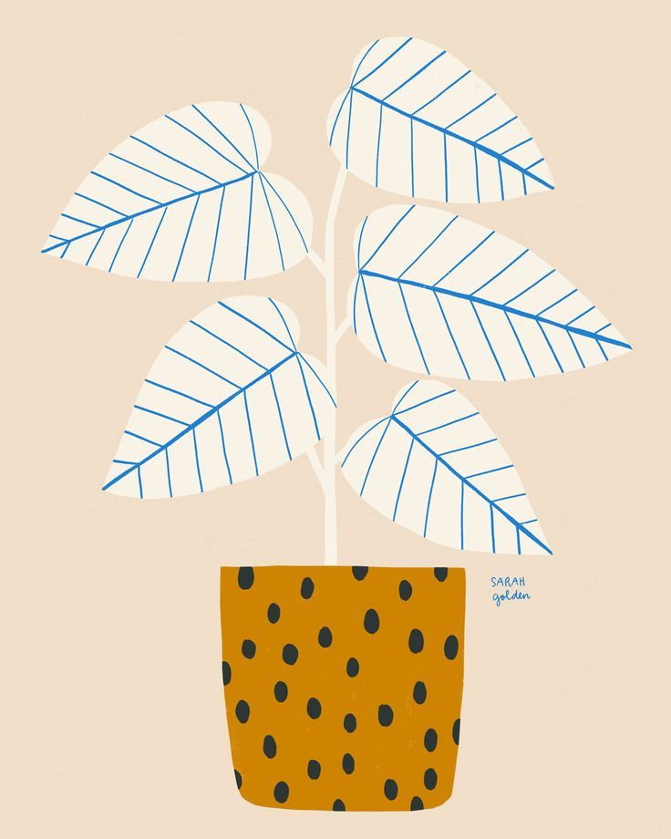 Blue Lines Plant Print – 2 color choices