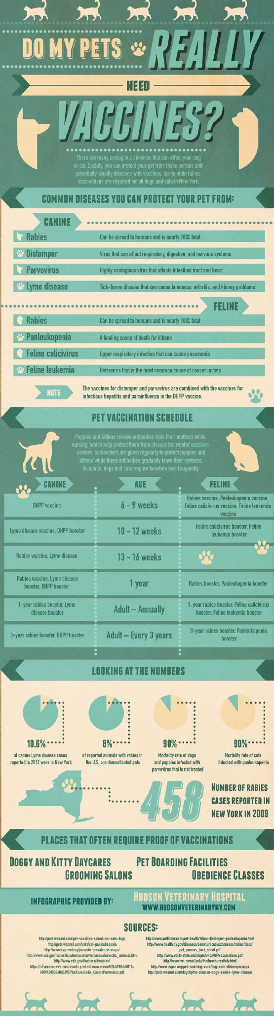 Do you know what vaccinations your pet needs? What about when he needs them? This infographic contains a vaccine schedule for both dogs and cats.