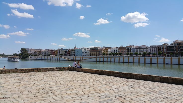 Sunny Spring day by the river in Guadalquivir.