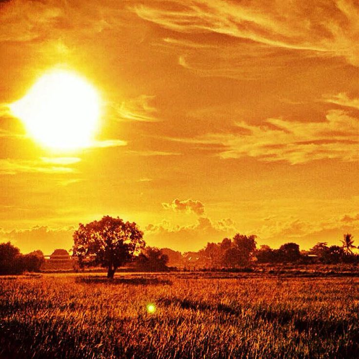 Photograph that I took, few weeks back in our province. Obvi, it was edited. ☀️❤️