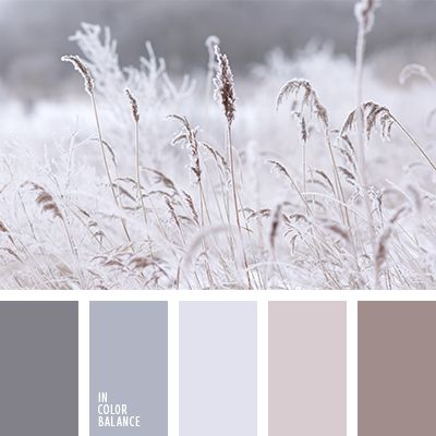 25 best ideas about winter color palettes on pinterest - Gray and cream color scheme ...