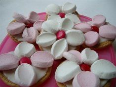 marshmallow & smarties on an iced marie biscuit