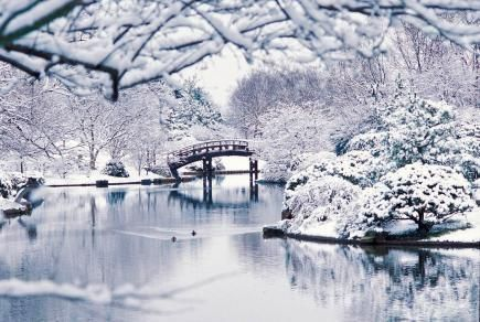 Missouri Botanical Garden: One of our favorite winter Midwest gardens. More great gardens and arboretums for winter: http://www.midwestliving.com/travel/destinations/53-midwest-gardens-and-arboretums-to-explore-winter/page/11/0