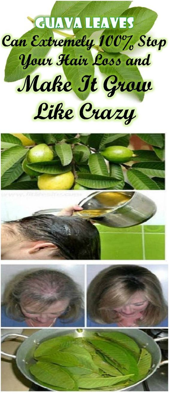 #Health #Beauty #Hair #Growth #Natural #Remedies #Guava #Leaves