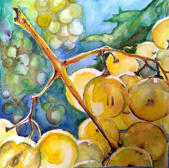 Grapes Original watercolor painting Fruit by PaintingByAHeart