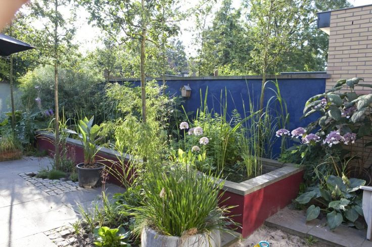 kleurvlakken in tuin. ontwerp: Freek de Gruijter