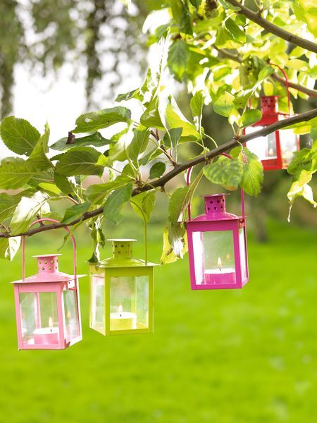 Colorful lanterns hanging from the tree...