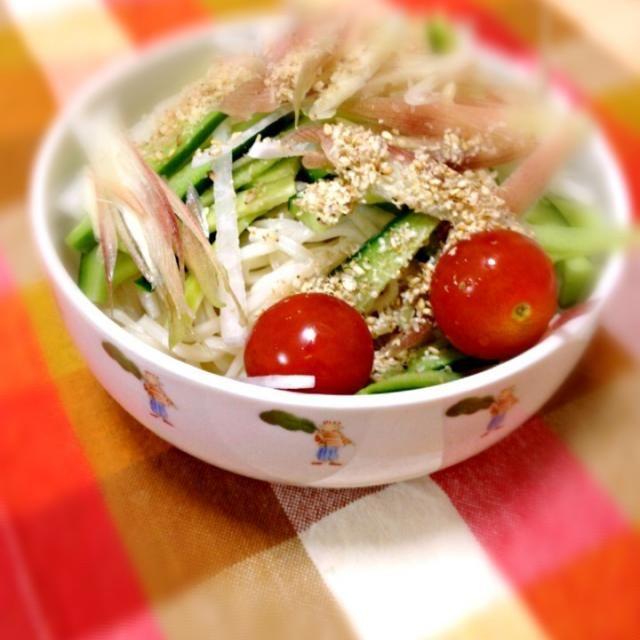 ミョウガとゴマをアクセントに冷蔵庫にあるあまり野菜で簡単調理 - 9件のもぐもぐ - サラダそうめん by megulove