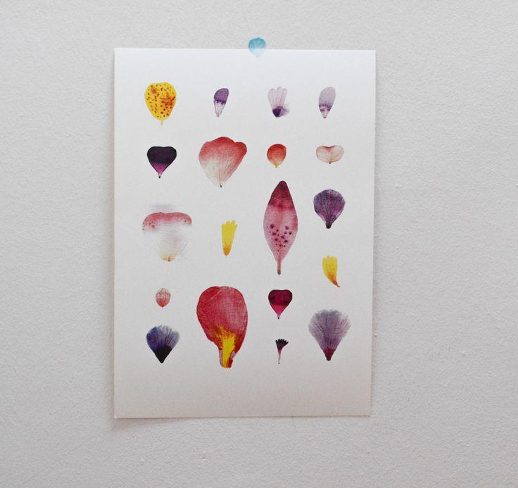 Okvětní+lístky+/plakát+A3+Tištěno+na+smetanový+papír,+240+gr.+Velikost+A3