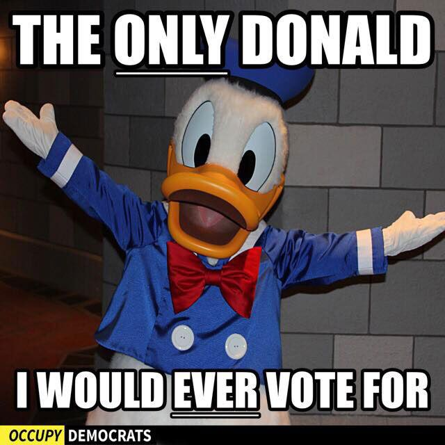 Funny Donald Trump Pictures and Viral Images: The Only Donald I Would Ever Vote For