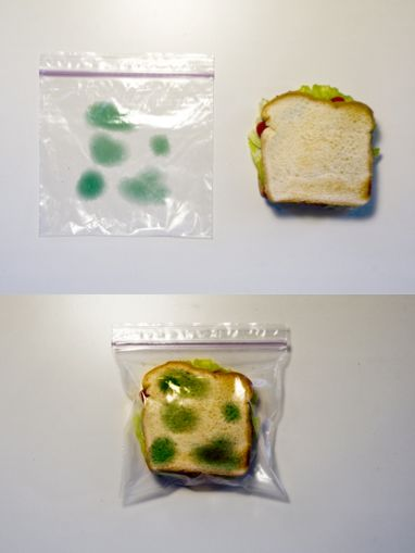 Anti-theft packaging