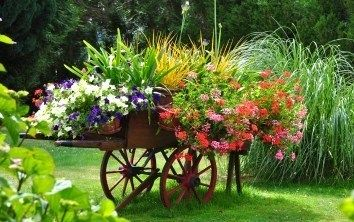 The garden cart, an art to decorate well and Makes a beef effect in the garden.