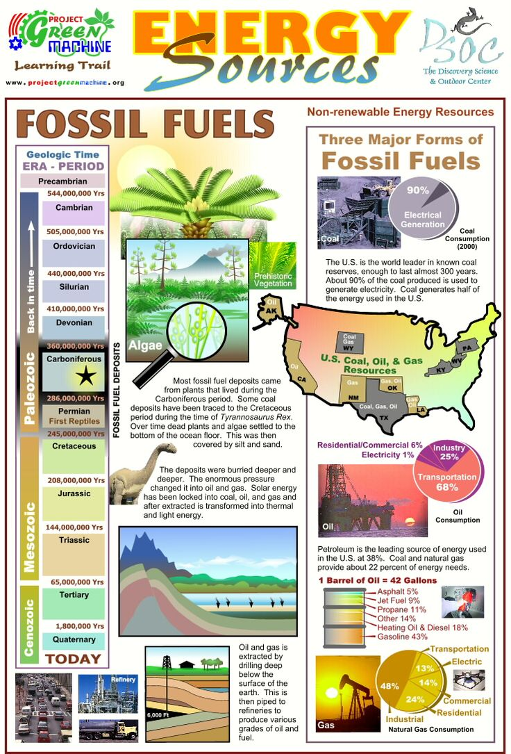 Energy Sources - Fossil Fuels. This handout could be handed out to students to file in their notebooks or binders as a reference to the origin and different types of fossil fuels. It has many visuals and graphics on the sheet that provide a better representation of the statistics of fossil fuel usage. Each section of the handout could be discussed in further detail in small group discussions. -RR