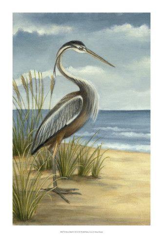 Shore Bird I Print by Ethan Harper at AllPosters.com