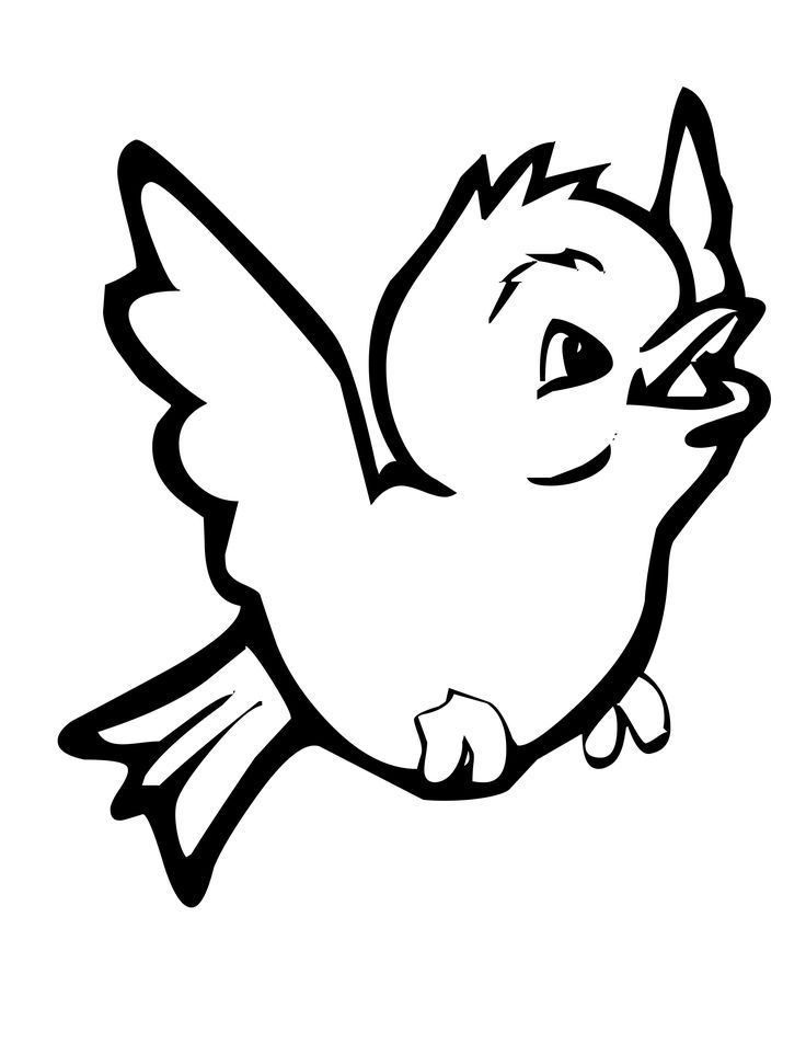 small birds funny learning to fly coloring pages for kids printable birds coloring pages for kids