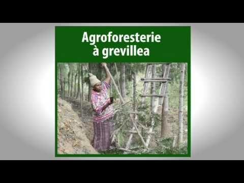 SLM 00 Introduction-Gestion durable des terres