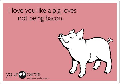 Funny Flirting Ecard: I love you like a pig loves not being bacon.: Alot, Happy Vegetarian Animal, Oink Oink, Mmmm Bacon, Someecards Love You, Valentine Cards, True Love, Bacon 3, Poor Piggies