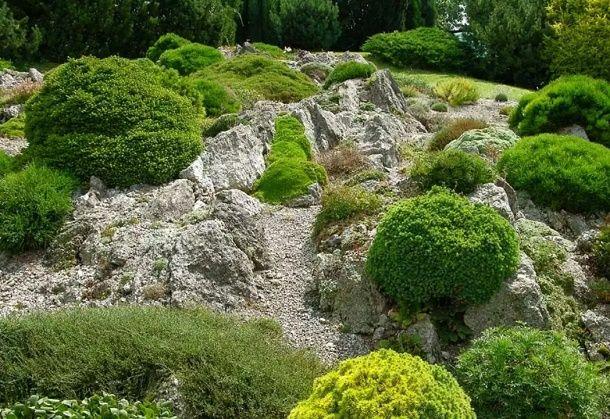 Каменистая горка по-правилам, фото