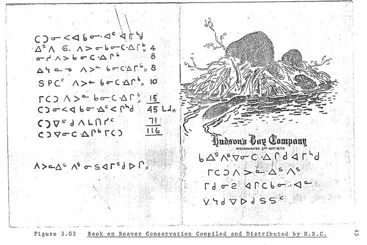 University of manitoba phd thesis