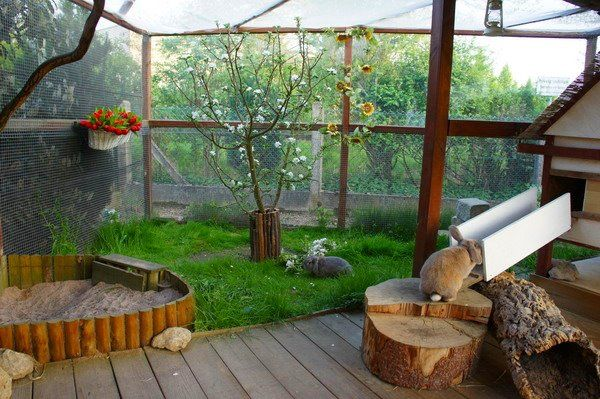 Løbegård til kaniner. Her er både græs, sandkasse og buske - det bliver ikke meget bedre for kaninerne!   http://www.kaninhaandbogen.dk #kaniner #udekaniner #kaninhaandbogen