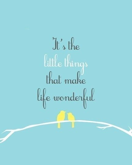 It's the little things that make life wonderful.