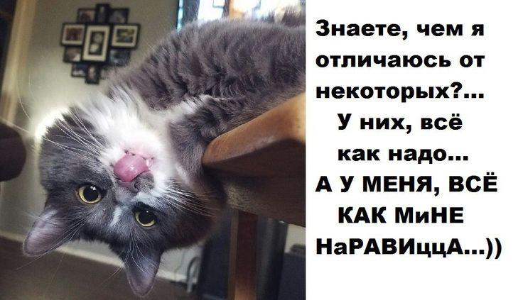 Ангелина Сокол