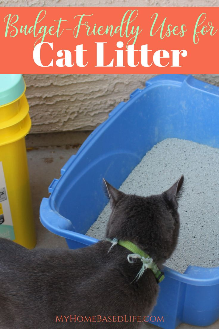 ad Cat litter is used to help us take care of our cats