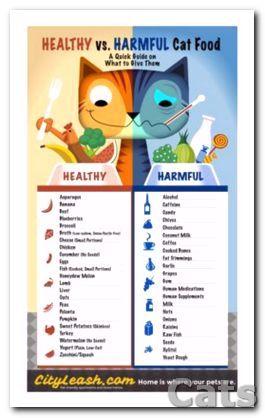 Gu?a para imprimir de alimentos sanos y nocivos para gatos.