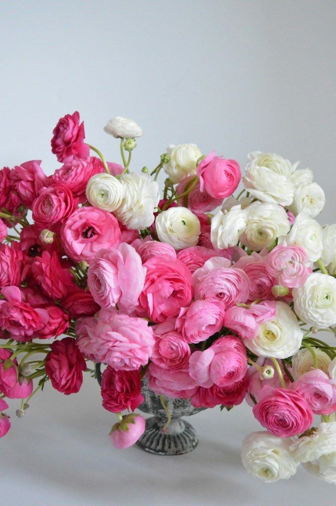 Best ranunculus centerpiece ideas on pinterest