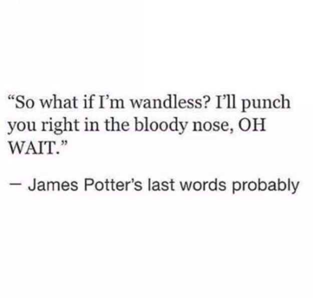 The heartbreakingly funny thought that James used his last moments to mock Voldemort's lack of a nose.