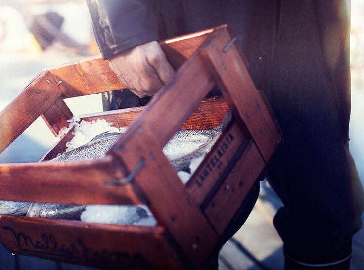 Thin King Salmon Skin Card Case - Cool Hunting