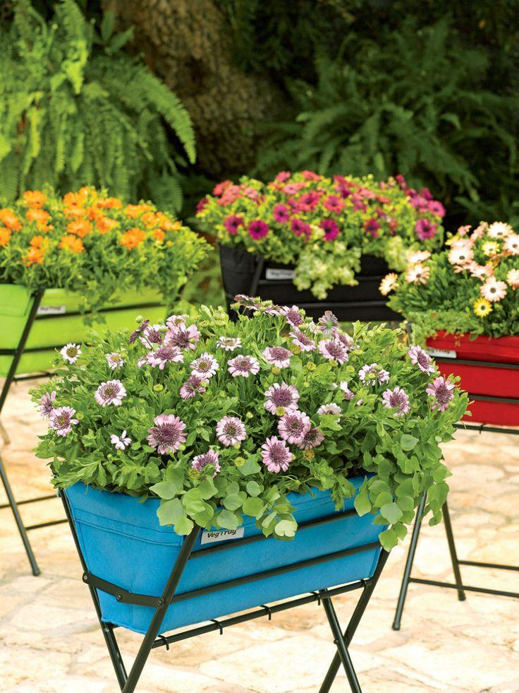 Vegtrug poppy, la mesa de cultivo para espacios pequeños - http://www.jardineriaon.com/vegtrug-poppy-la-mesa-de-cultivo-para-espacios-pequenos.html
