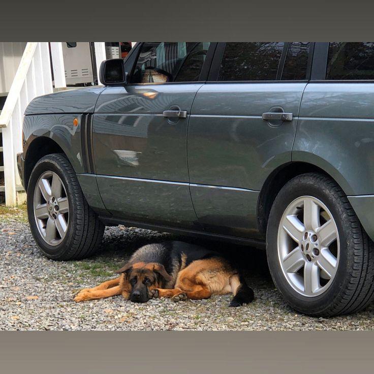 Kaptan loves his Range Rover. in 2020