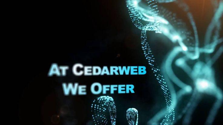 Cedarweb Services The Online World